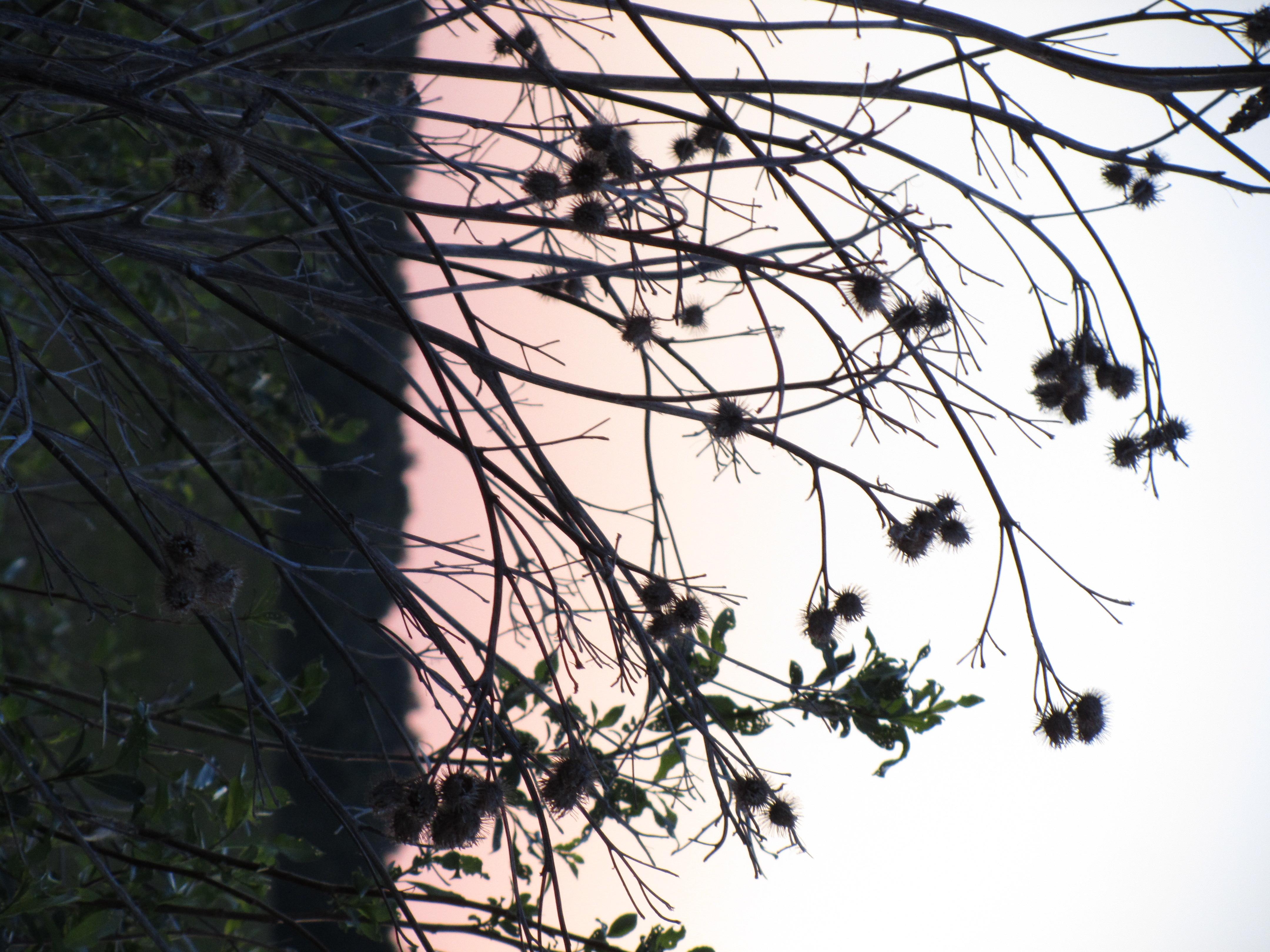 15b4a9471f4 Vastu vastust pilditatud pilt näitab kaamera dünaamilist ulatust. Kurta  just ei saa. // Fookuskaugus: 85 mm / Ava: f/4.5 / Säriaeg: 1/15 / ISO: 200  / Välk: ...