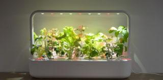 Click and Grow Smart Garden 9 – kasvata veelgi rohkem taimi korraga